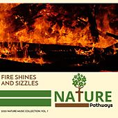 Fire Shines and Sizzles - 2020 Nature Music Collection, Vol. 7 by Various Artists