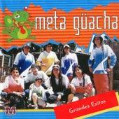 Grandes Exitos de Meta Guacha