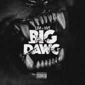 Big Dawg by LEVI