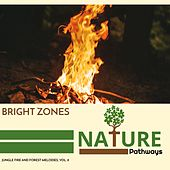 Bright Zones - Jungle Fire and Forest Melodies, Vol. 8 by Various Artists