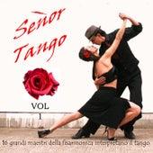 Señor Tango, Vol. 1 von Various Artists