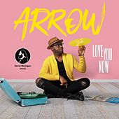 Love You Now (David Michigan Remix) de Arrow
