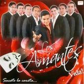 Sacate la Careta by Los Amantes