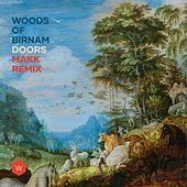 Doors (Makk Remix) by Woods of Birnam