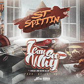 I Can See Why (feat. Finesse & Kevin Allen) de ST Spittin