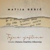 Tajna vještina - glazba zlatana stipišića gibonnija de Matija Dedić