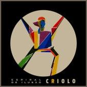 Espiral de Ilusão von Criolo