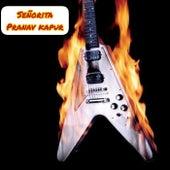 Señorita (Instrumental Version) by Pranav Kapur