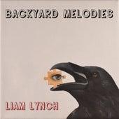 Backyard Melodies by Liam Lynch