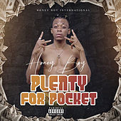 Plenty For Pocket by Honeyboy