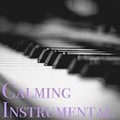 Calming Instrumental by Various Artists