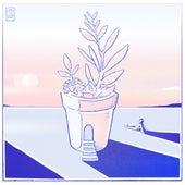 Apricate (feat. G Mills, Louk & Chris Mazuera) by Goosetaf