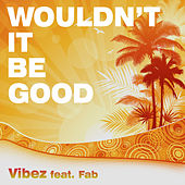 Wouldn't It Be Good by Vibez