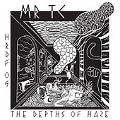 The Depths Of Haze de MR TC