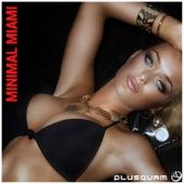 Minimal Miami by Various Artists