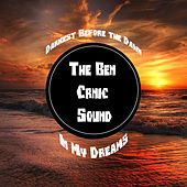 Darkest Before the Dawn by The Ben Crnic Sound