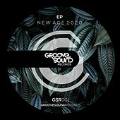 New Age 2020 EP de Various Artists