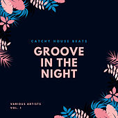Groove In The Night (Catchy House Beats), Vol. 1 von Various Artists