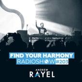 Find Your Harmony Radioshow #203 de Andrew Rayel