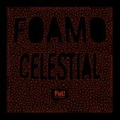 Celestial von Foamo