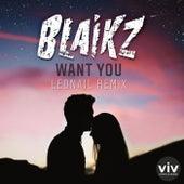 Want You (Leonail Remix) by Blaikz