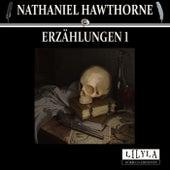 Erzählungen 1 (Der große Karfunkel, Die Totenhochzeit.) von Friedrich Frieden