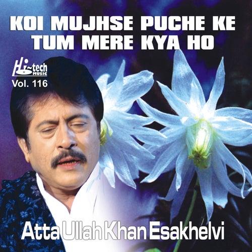 Koi Puche Mere Dil Pe Mp3 Song Download: Koi Mujhse Puche Ke Tum Mere Kya Ho Vol. 116 By Attaullah