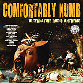 Comfortably Numb - Alternative Radio Anthems von Various Artists