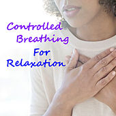 Controlled Breathing Exercise For Relaxation by Various Artists