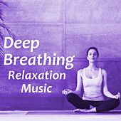Deep Breathing Relaxation Music by Various Artists