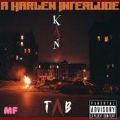 A Harlem Interlude by TAB
