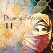 Dreaming of Arabia 2 di Various Artists