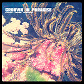 Groovin in Paradise by Various Artists