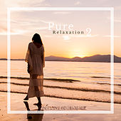 Pure Relaxation de Various Artists