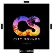 City Sounds, Vol. 10 de Various Artists