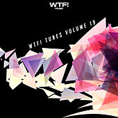 WTF! Tunes, Vol. 19 de Various Artists