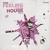 This Feeling Called House, Vol. 2 by Various Artists