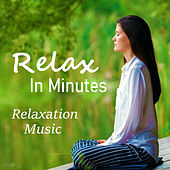 Relax In Minutes Relaxation Music by Various Artists
