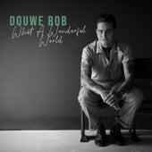 What A Wonderful World von Douwe Bob