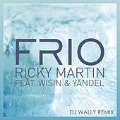 Frío (DJ Wally Remix) de Ricky Martin