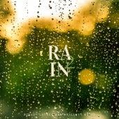 Rain 2 de Various Artists