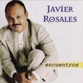 Encuentros by Javier Rosales