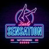 Funky Sensation fra Various Artists