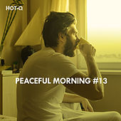 Peaceful Morning, Vol. 13 by Hot Q