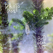 Biogénesis de Protopost