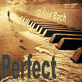 Perfect by David Bach
