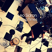 Trying Times by Leo Sidran