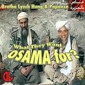 What They Want Osama for (feat. Brotha Lynch Hung) - Single by Papoose