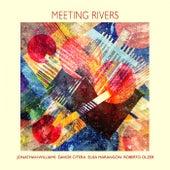 Meeting Rivers de Jonathan Williams