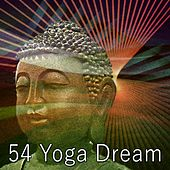 54 Yoga Dream by Deep Sleep Meditation